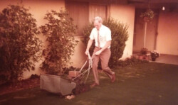 (Don mowing his front yard lawn after work)